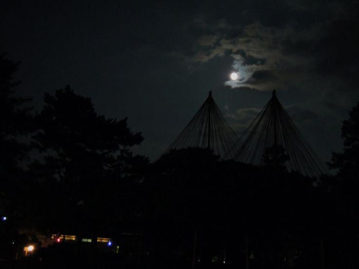 月と雪吊り@兼六園