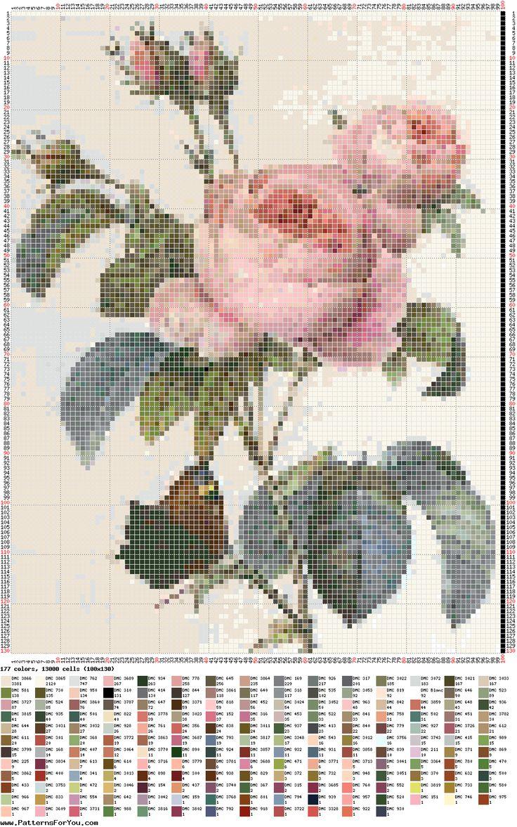 rosas antiguas