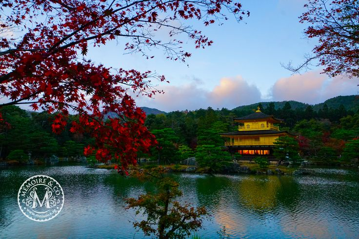 Experience the rich culture and art lingering through the old city of Kyoto with Memoire & Co., and discover incredible ancient structures such as this Golden Pavilion, set amidst the serene, lush nature. #memoireandco #thedreammaker #weddinggown #sgbridal #singaporebrides #brides #inspiration #preweddingphotography