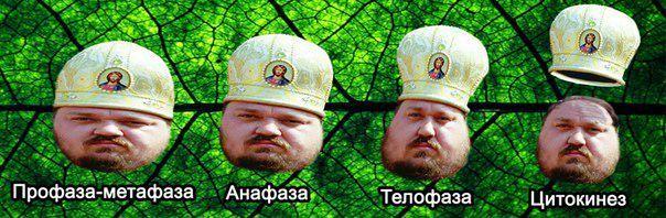 Православный митоз