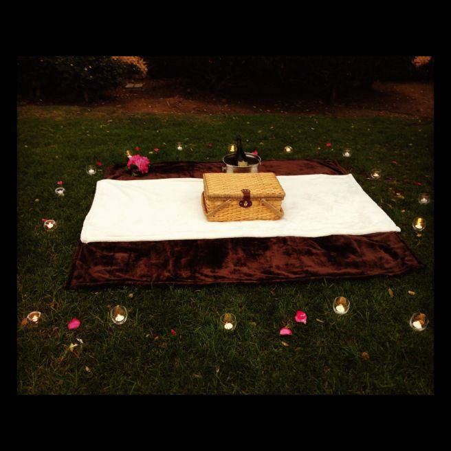 De eerste avond na Noah's en Penny's eerste ontmoeting nodigt Noah Penny uit voor een picknick bij maanlicht. Ze leren elkaar beter kennen op die avond en Penny voelt zich voor het eerst in haar leven belangrijk omdat er iemand is die haar echt leuk vindt om wie ze is. Penny krijgt haar eerste kus op deze avond van de jongen van haar dromen.
