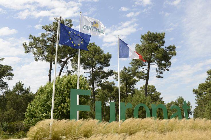 Passer ses vacances dans le centre naturiste Euronat en Gironde, en famille, ou avec des amis, c'est profiter d'un environnement exceptionnellement préservé, au bord de l'océan, avec accès direct à la plage naturiste et un complexe de piscines chauffées et un centre de thalassothérapie naturiste