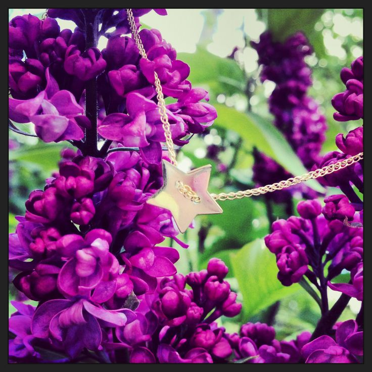 Flower power! Spring