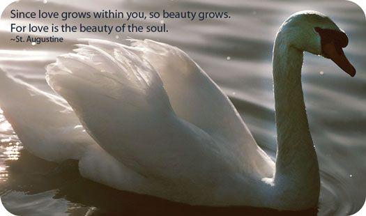 Love Grace Union Purity Beauty Dreams Balance Elegance Partnership Transformation