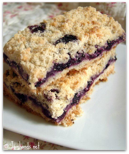 Easy Blueberry Crumb Bars ~ sugar, flour, shortening, egg, cinnamon, blueberries thickened with cornstarch-sugar; baked; enjoy