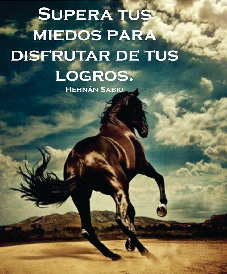 〽️ Supera tus miedos, para disfrutar tus logros. Hernán Sabio