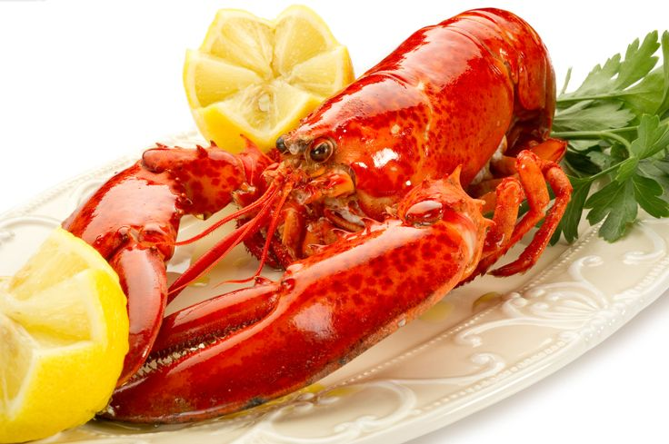 HOW TO COOK LOBSTER SOUS VIDE - Cooking lobster sous vide guarantees a perfectly soft and flavoursome result. Buy your lobster from a reputable fishmonger and make sure that it is alive before purchasing.