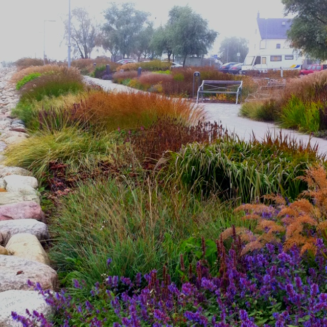 Piet oudolf the four seasons park in s lvesborg sweden for Designing gardens with grasses