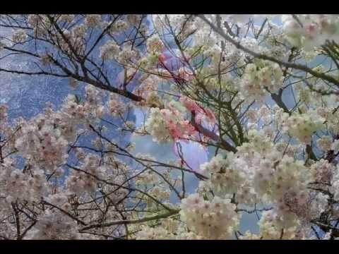おはようございます。 今日5/20はジョー・コッカーが生まれた日。 今朝の一曲は「 明日への道標」(I'm So Glad I'm Standing Here Today)。クルセイダーズのアルバム「スタンディング・トール」にジョー・コッカーが参加して歌った曲です。渋い声で切々と歌い上げるヴォーカルがストレートに響きます。一年前の今日もこの曲を選んだのですが、やっぱりいい曲なので再び(^ ^) でも、動画自体は一年前のものとは別です。仙台の映像にこの曲が重なると、なおいっそう響くものがあります。。