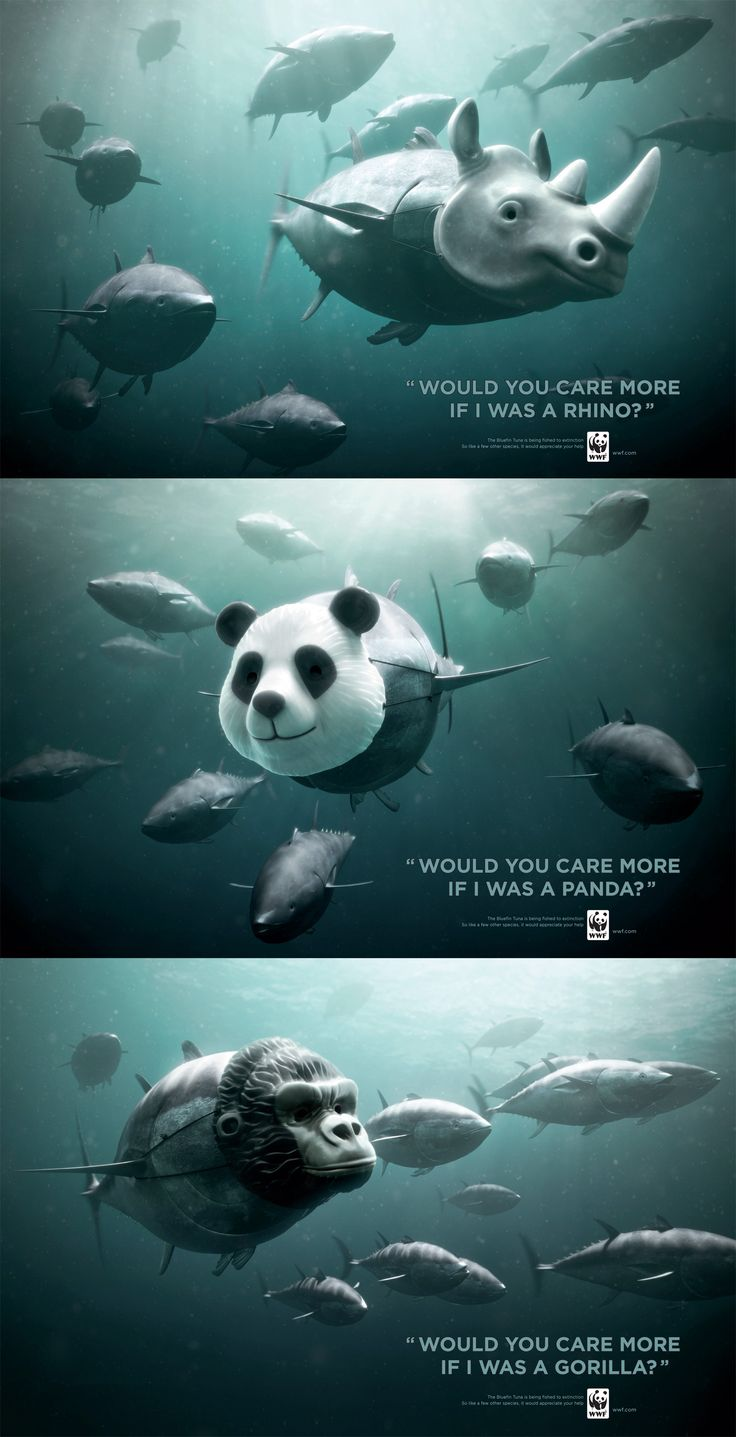 Powerful/ inspirational advertising campaigns for animals. #marketing #WWF #Ad