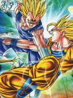 Vegeta Vs Goku, the fate of their rivalry.
