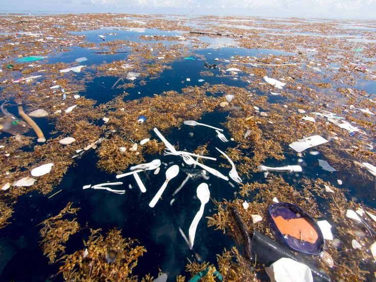 """Impresionantes fotos en el Caribe muestran un aterrador """"mar de plástico y poliestireno"""