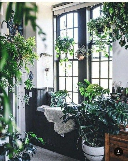44 lovely and and beauty indoor gardening ideas decor indoor rh pinterest com