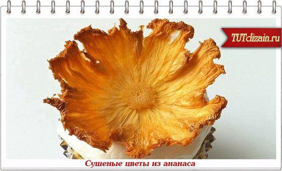 Сушеные цветы из ананаса + Фото » Дизайн & Декор своими руками