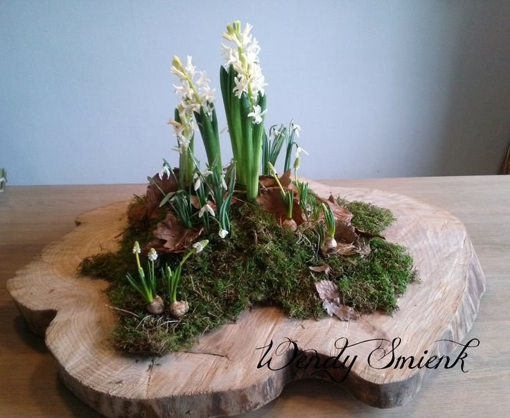 .moss and bulbs on slab