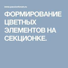 ФОРМИРОВАНИЕ ЦВЕТНЫХ ЭЛЕМЕНТОВ НА СЕКЦИОНКЕ.