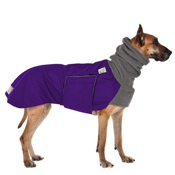 GREAT DANE Winter Dog Coat, color: blue, size: medium, for our long morning walks :)