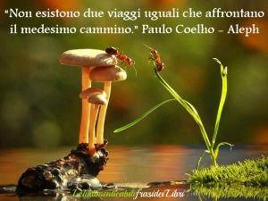 Paulo Coelho-Aleph (Viaggio)