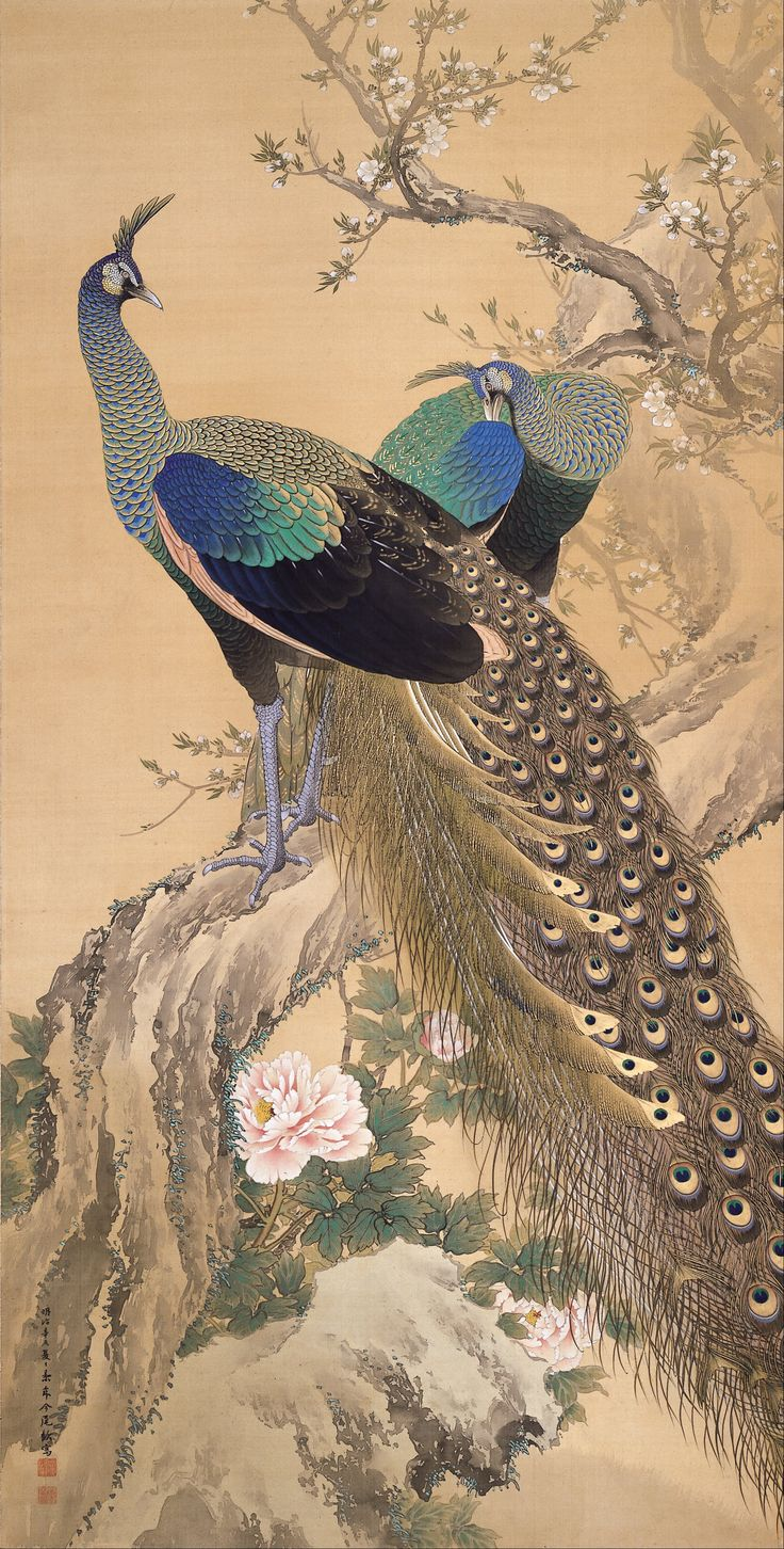 Imao Keinen -A Pair of Peacocks in Spring-