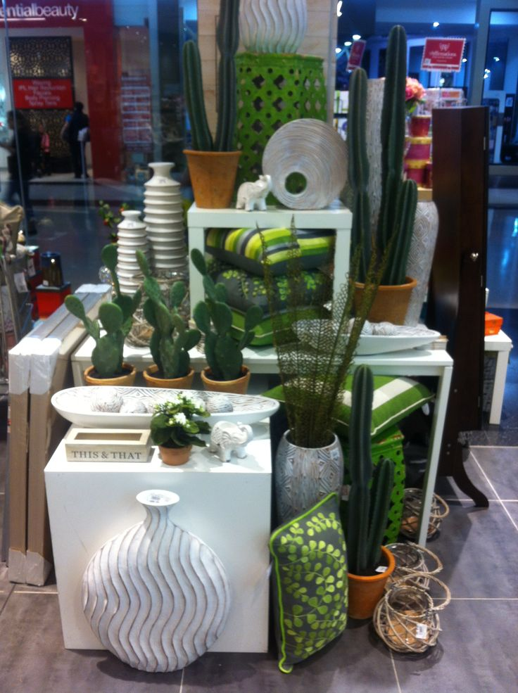 """Resin vases, funky cacti in pots, and green mix and match cushions, small timber box for your """"this and that"""" stuff"""