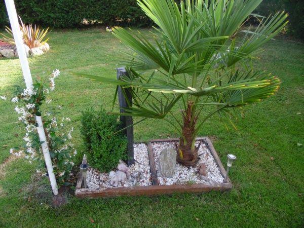 48 best Jardin images on Pinterest Arbors, Backyard patio and Decks - petit jardin japonais interieur