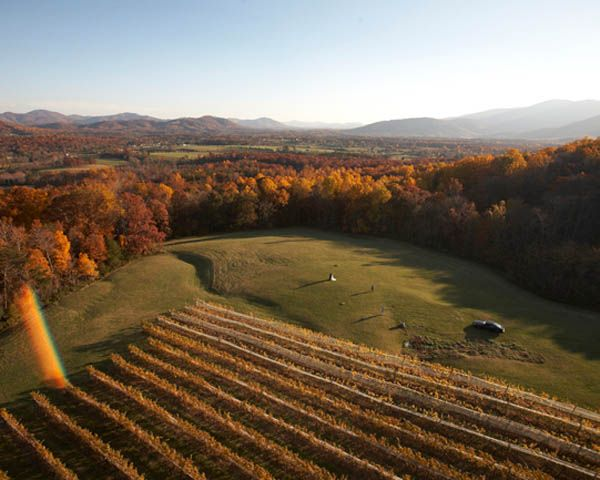 Great Road Trips: Virginia Wineries Worth Visiting...I remember driving through here and saying, Must do