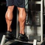 calf exercises, best calf exercises, calf anatomy, calf workout, calves workout, calves exercise, best calves workout, calf exercises for women, calf muscle exercises, gastrocnemius, soleus