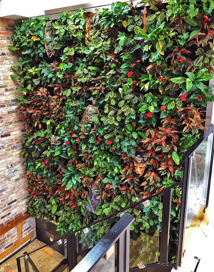 84 Best Indoor Vertical Garden Ideas Images On Pinterest