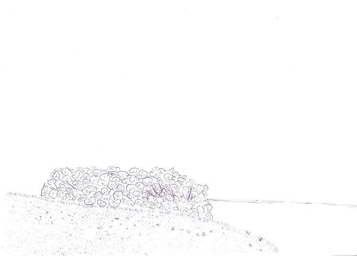 have & kilde pen/sketchbook 2013