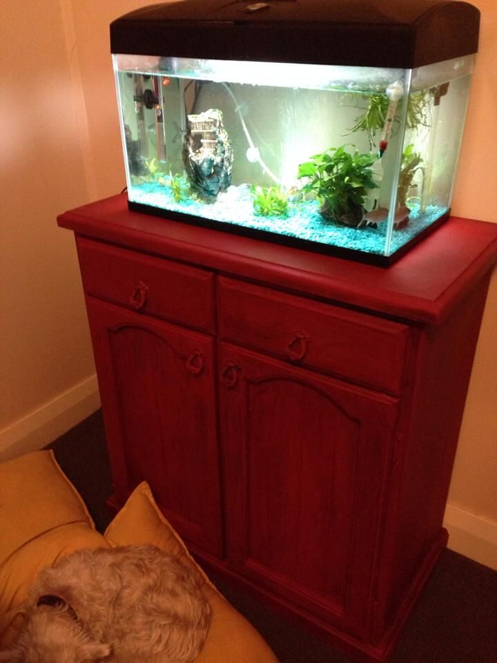 This is my fish tank that I repurposed with Emperor's Silk - only did one coat cause was in middle of rearranging room when I took the chance to quickly fix it from pedestrian brown (wishing I'd kept going now and finished the second coat but it's still pretty awesome for first ever attempt - also wish I had a before shot)