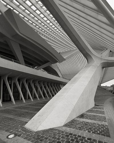Gare Liège - TGV Train Station Guillemins,   Liege, Belgium, 2009  Santiago Calatrava, architect