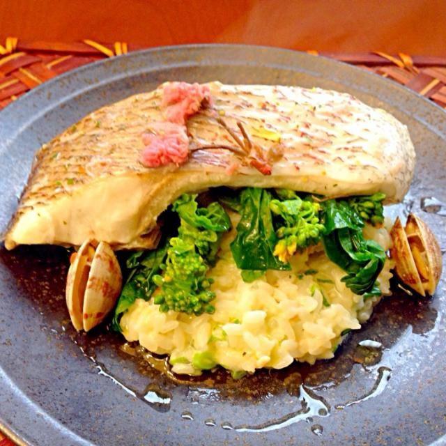 motopan's Sakura steamed sea bream w/Soy milk risotto of Tenderstem broccoli  もとぱんさんのように綺麗に盛り付け出来なかった 金目鯛の方が綺麗ですね〜✨いつの日か鯛に桜の花びらの細かいのをまとわせて彩りwスープに蒸し汁使いたかったので浅利も一緒に蒸してみました 豆乳感無く、姫の大好きなクリームのご飯❗良く行く和イタリアンのお店見たいと喜んでくれたので、良くリクエストもらうクリームリゾットをヘルシー豆乳にしようと思います✨ 桜の塩漬けの香りの鯛と菜の花、豆乳リゾットのマリアージュ、とぉっても美味しかったです - 120件のもぐもぐ - Il latte di soia risotto di fiori di stupro e orataもとぱんさんの鯛の桜蒸し春待の香り 豆乳リゾットと共に by Ami