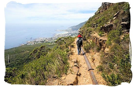Walking the fairly level Pipe Track hiking trail - Activity Attractions in Cape Town South Africa and the Cape Peninsula