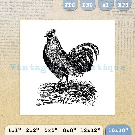 Printable Antique Rooster Image Download by VintageRetroAntique