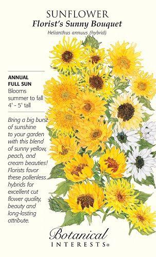 Florist's Sunny Bouquet Sunflower Seeds - 4 grams