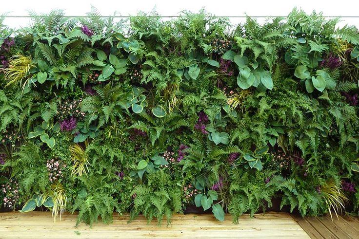 C mo crear un jard n vertical con woolly pocket events - Como arreglar un jardin ...