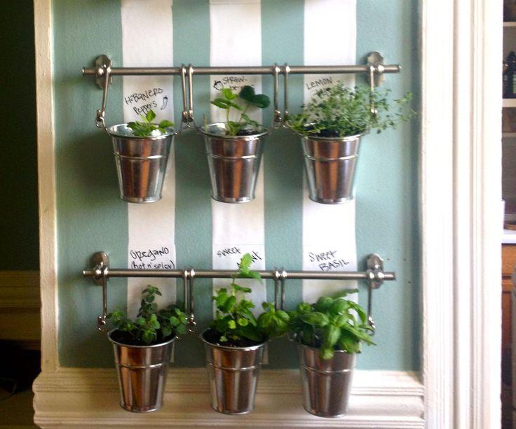 hanging indoor herb garden home organization pinterest herbes aromatiques jardin. Black Bedroom Furniture Sets. Home Design Ideas