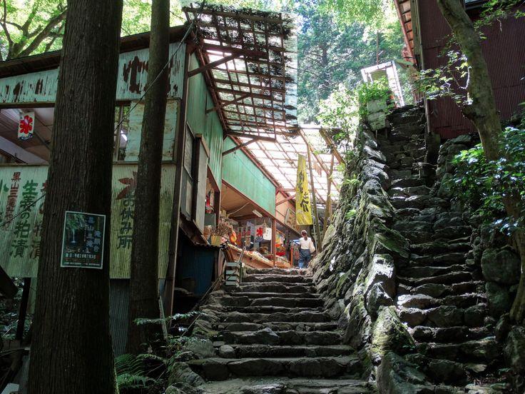 Old Shop in the Forest  Kuroyama Santaki Saitama Prefecture [OC](5184x3888)