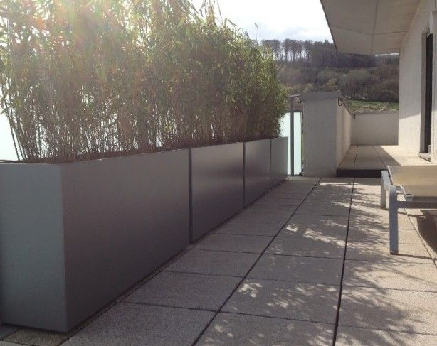 langwerpige-aluminium-plantenbakken-gebruikt-om-een-haag-in-te.1381671219-van-HetTuinleven.com.jpeg (614×487)