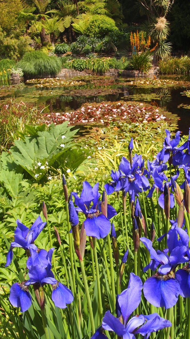 Royal Tasmania Botanical Garden, Hobart, Tasmania