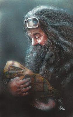 WallPotter: Rúbeo Hagrid e Harry Potter bebe