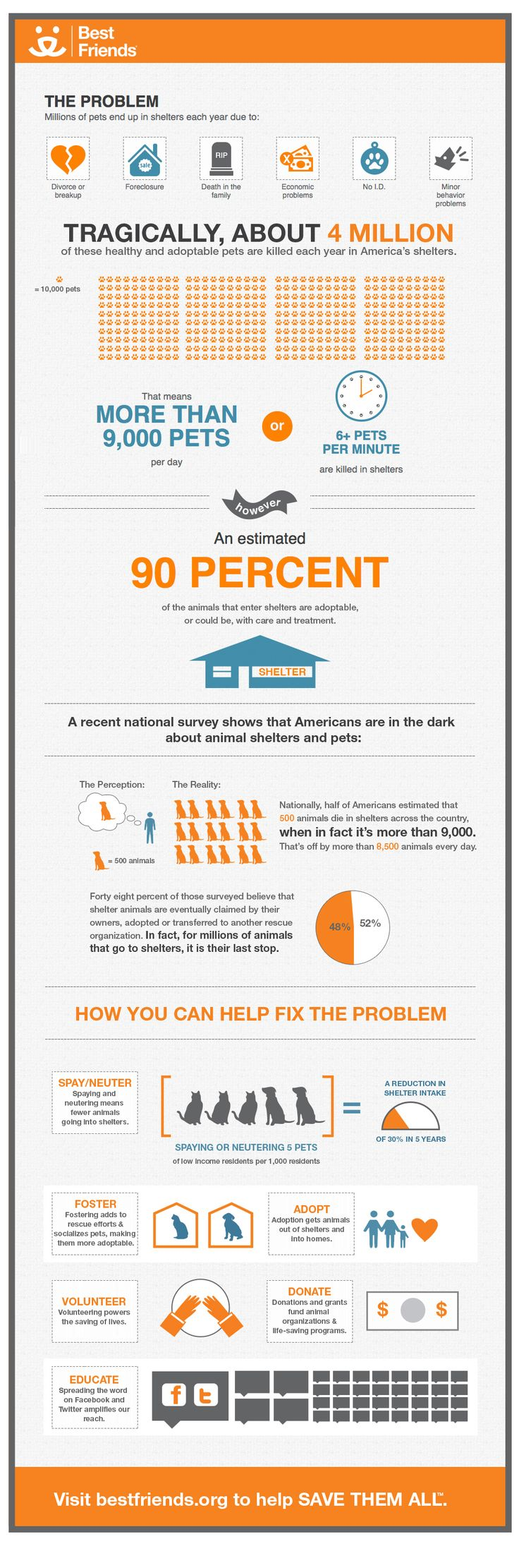 SAVE THEM ALL Most Americans don't know that more than 9000 dogs and cats are killed in shelters every day. You can help save these animals. Check out this infographic and share it with your friends. Spread the word to help Save Them All. SAVE THEM ALL INFO