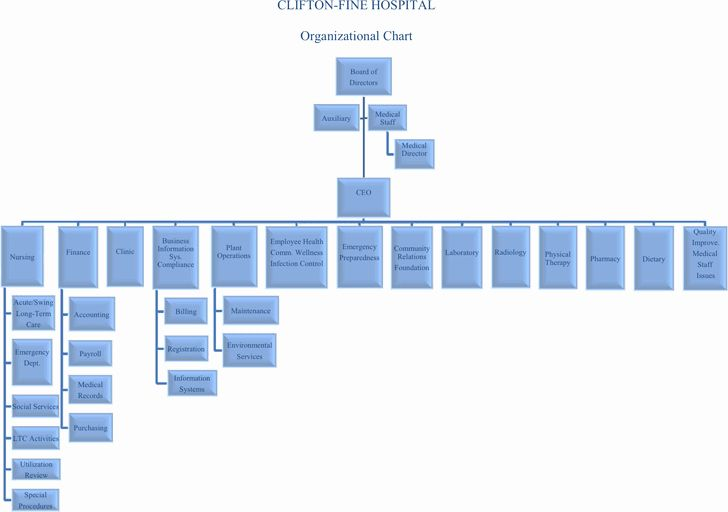 Hospital Organizational Chart Examples Awesome Hospital Organizational Chart Template Free Download In 2020 Organizational Chart Chart Powerpoint Charts