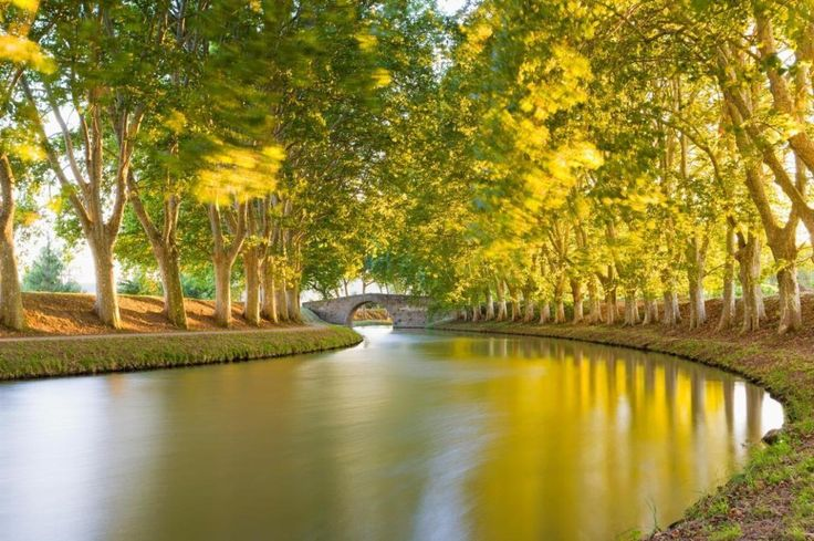 11 reasons why a trip on the Canal du Midi is one of the world's great journeys - Travel http://telegraph.co.uk/travel/destinations/europe/france/galleries/canal-du-midi-barging-holiday-highlights