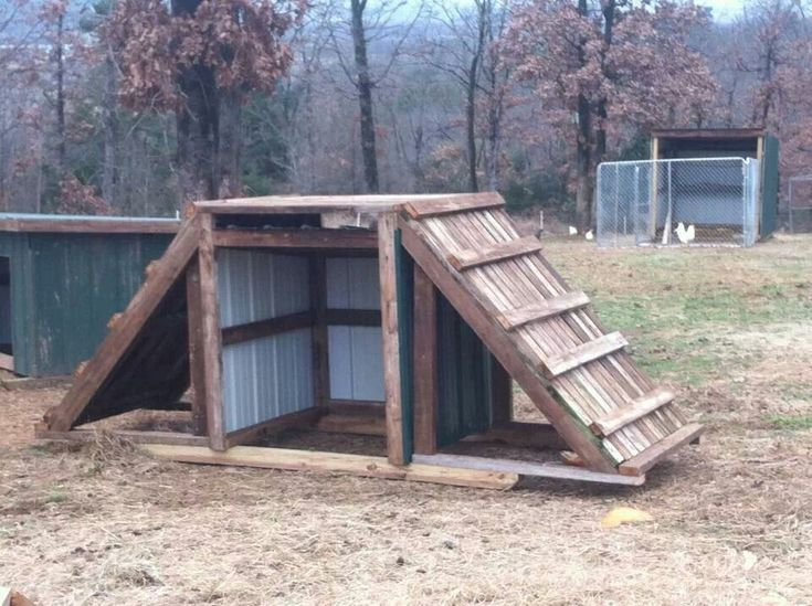 Sublime 21 DIY Wood Pallet Goat Shelter https://meowlogy.com/2018/03/02/21-diy-wood-pallet-goat-shelter/ If you're raising heritage birds for breeding, you'll want to come after a different feeding program