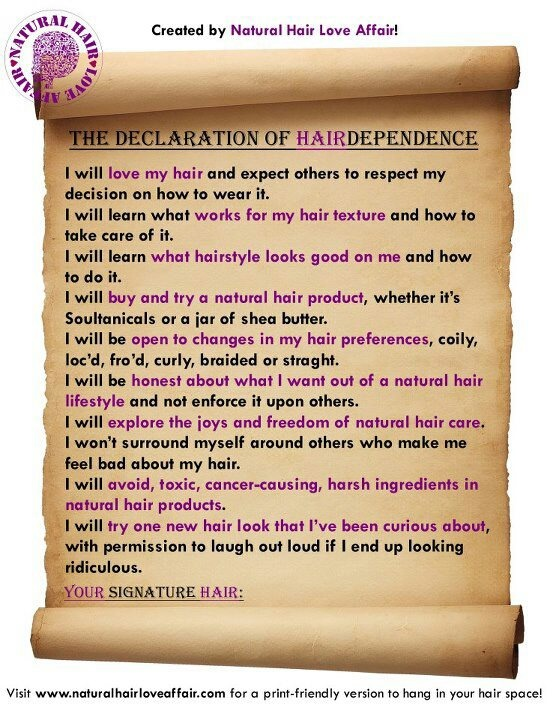 The Declaration Of Hairdependence Natural Hair
