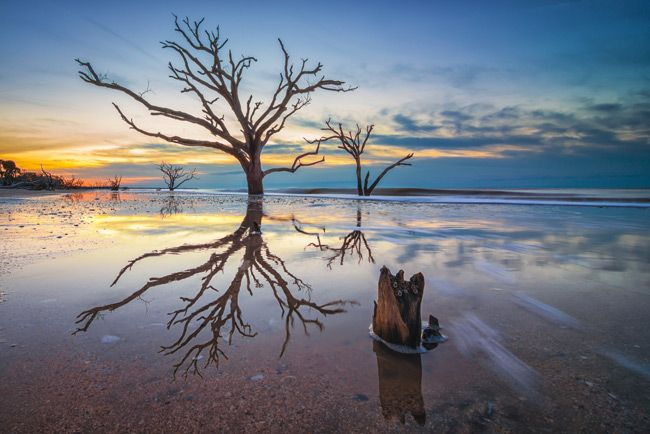 josh, let's go here at sunset for photos  Botany Bay Plantation Heritage Preserve