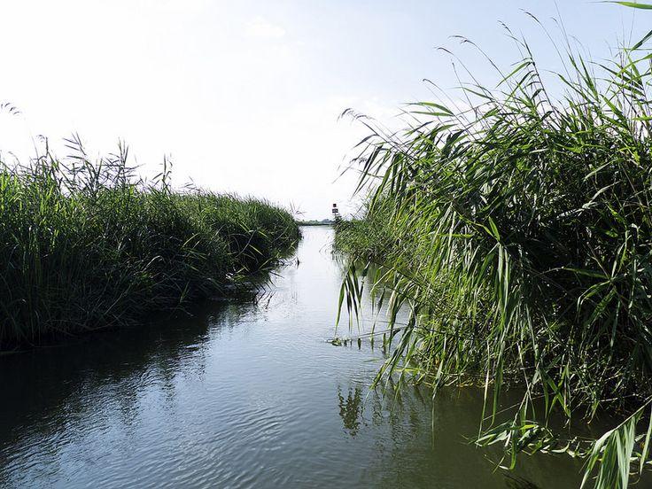 On a small boat at Lake Tisza (Tisza-tó). What a fantastic place!