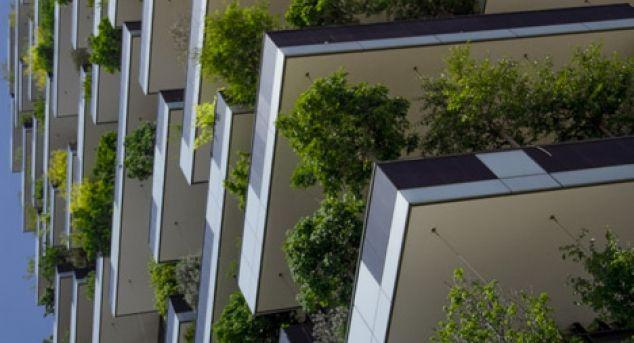 Paduri verticale – un vis devenit realitate in Italia | Povestea Casei