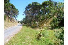 3.2ha 10 mins Carterton hill bush $180k under GV